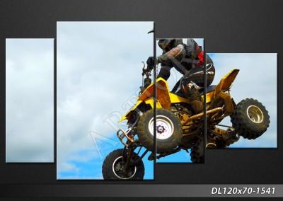 i-obraz-na-plotnie-dl120x70-sport-1541.j